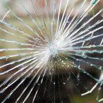 大阪市南区の窓ガラス修理